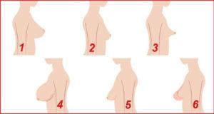 بالصور أشكال صدر المرأة .. ماهو أجمل ثدي يفضله الرجال؟